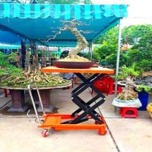 Xe nâng mặt bàn tại Đà Nẵng, Nha Trang, Huế, Bình Thuận