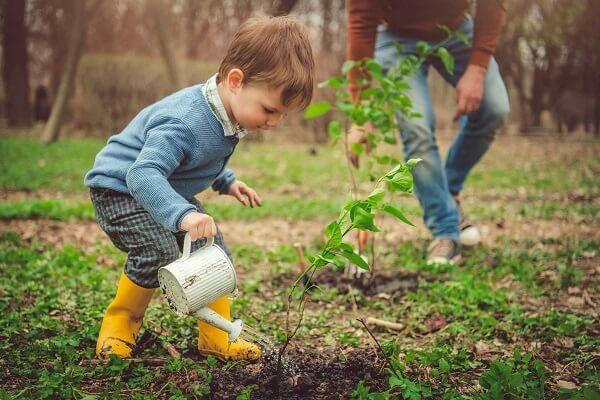 Chơi cây cảnh ngoài mang lại giá trị tinh thần, đam mê giải tỏa căng thẳng còn có giá trị kinh tế